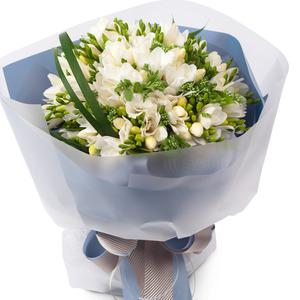 프리지아흰색노란색꽃다발(봄상품)